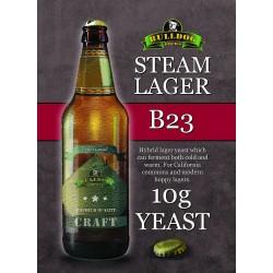 Bulldog B23 Steam Lager