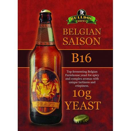 Bulldog B16 Belgian Saison