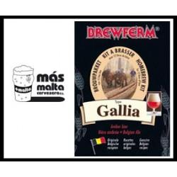 beerkit BREWFERM GALLIA Belgian Ale 12l