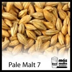 Malta Château Pale Ale