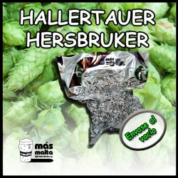 Hallertauer Hersbruker - flor - 2014