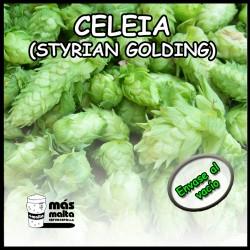 bala 5kg flor Celeia (STYRIAN GOLDING) -SL-