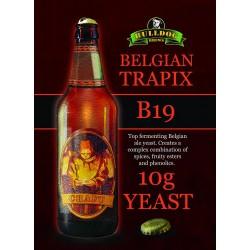 Bulldog B19 Belgian Trapix